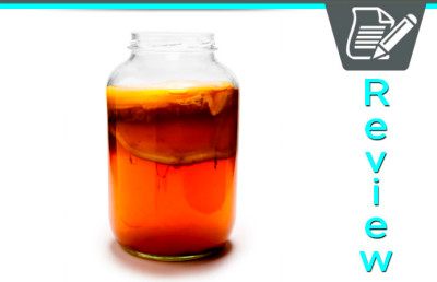 Kombucha Tea Guide | Health Benefits & Side Effect Information