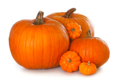 Pumpkins come in all shapes and sizes. Pumpkins are winter squash and ...