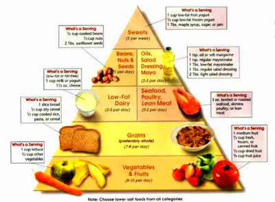 DASH Food Pyramid - Dietary Approaches to Hypertension