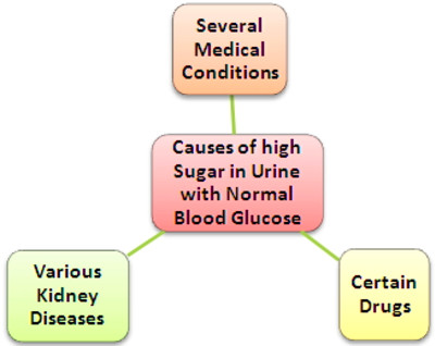 Can one have normal sugar level in blood but high sugar in urine?