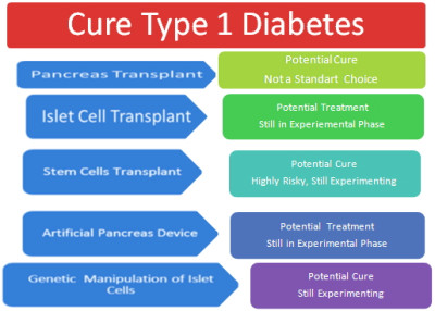 Cure for diabetes mellitus - Does it really exist?