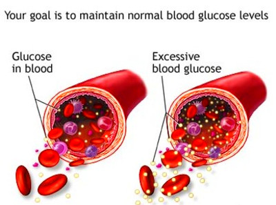 What happens to blood sugar after a meal 3