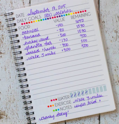 Food Journal for Weight Watchers Points or Calories