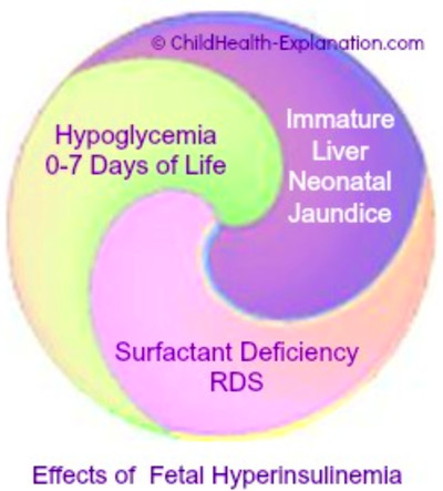 ... diabetes during pregnancy exposes the baby to high glucose levels