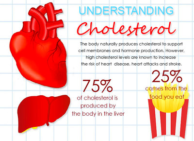 Ideal HDL and LDL Cholesterol Levels – Scary Facts ...