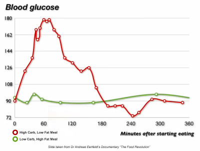 ... blood sugar levels over a 6 hour period after eating two completely