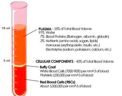 Normal Hematocrit Levels- Low, High Hematocrit