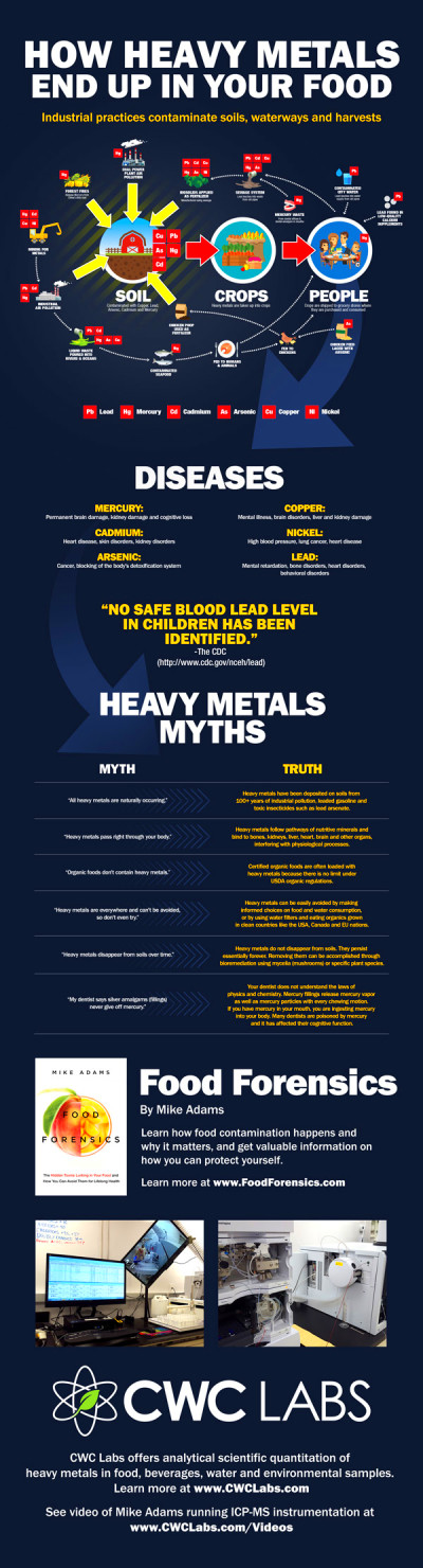 Eating heavy metals more dangerous to your health than SMOKING: Watch ...