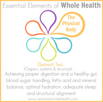 Essential Elements Series- Element Two: The Physical Body- Part 1 of 3 ...