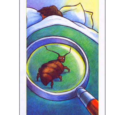 Bed Bugs: What Everyone Should Know (50/Pkg)