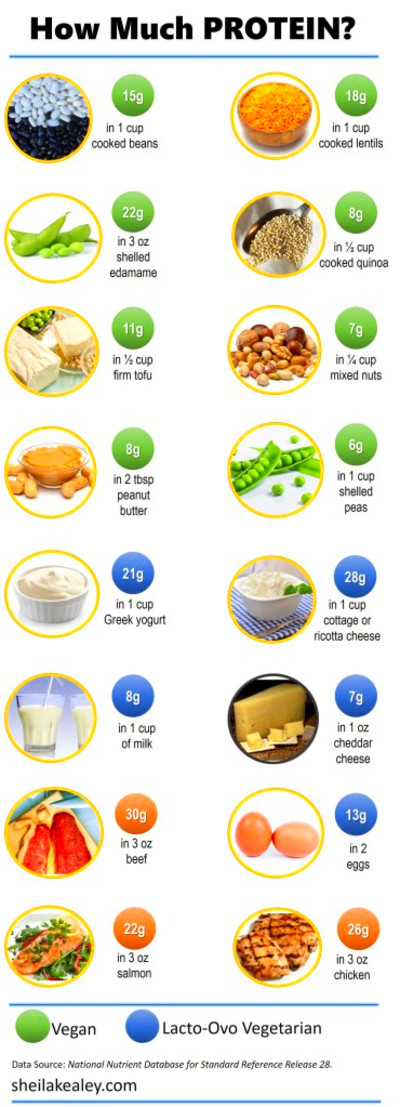 How Much Protein Sm