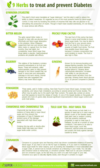 Super Herbal Foods – Natural Remedies - 9 herbs to Treat ...