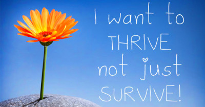 & Thrive Ten reasons why The Thrive Programme works better than ...