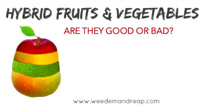 Hybrid Fruits & Vegetables: Are they good or bad?