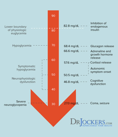 Hypoglycemia Causes and Natural Solutions - DrJockers.com