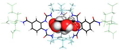 Glucose binding molecule could transform the treatment of ...