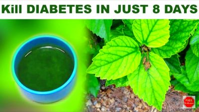 Kill Diabetes Forever In Just 8 Days Easy And Faster Home Remedy(Video)