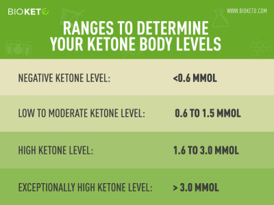 How to Test Your Ketone Levels | BioKeto