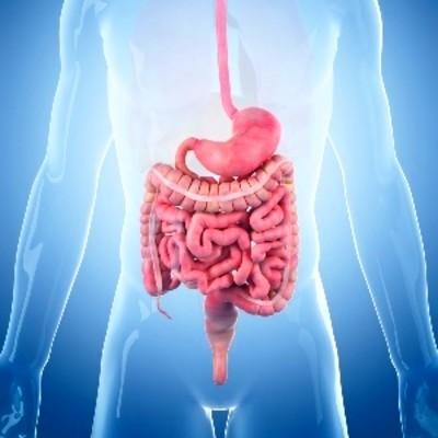 New gastroparesis procedure offers hope for diabetes patients | Health24