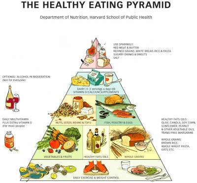 The new food pyramid: More fruit and veg, fewer ...