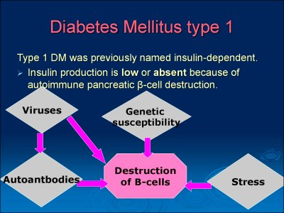 Diabetes mellitus. (Subject 8) - online presentation