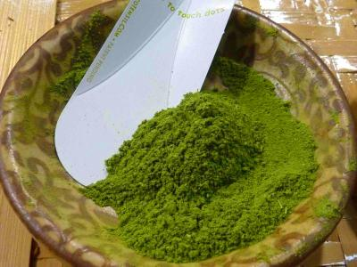 Moringa Nutritional Powerhouse - Good for cancer, aids ...