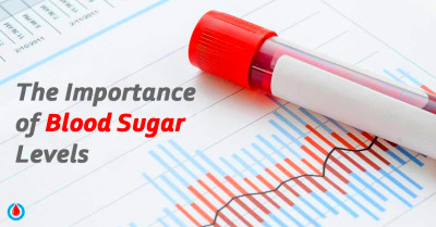 This Is Why It's Important to Monitor Your Blood Sugar ...
