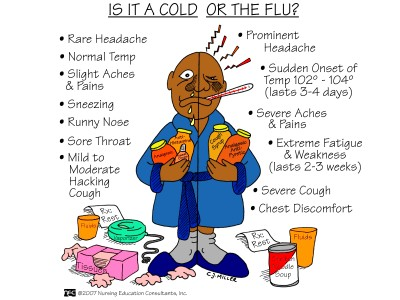 Lifestyle Medicine approaches to Cold & Flu Prevention | Brian Benedict, N.D.