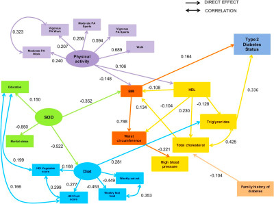 Structural equation model for estimating risk factors in type 2 diabetes mellitus in a Middle ...