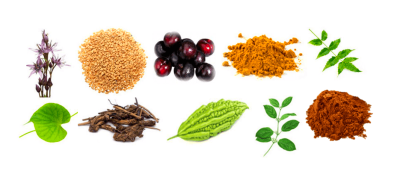 Herbal Supplements For Type 2 Diabetes - Nutritional Medicine