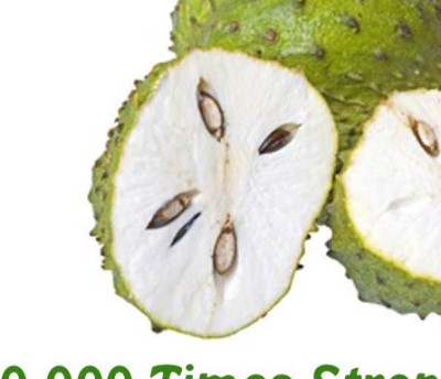 The Soursop Fruit as a Cure for Cancer | Healthy Cancer Chick