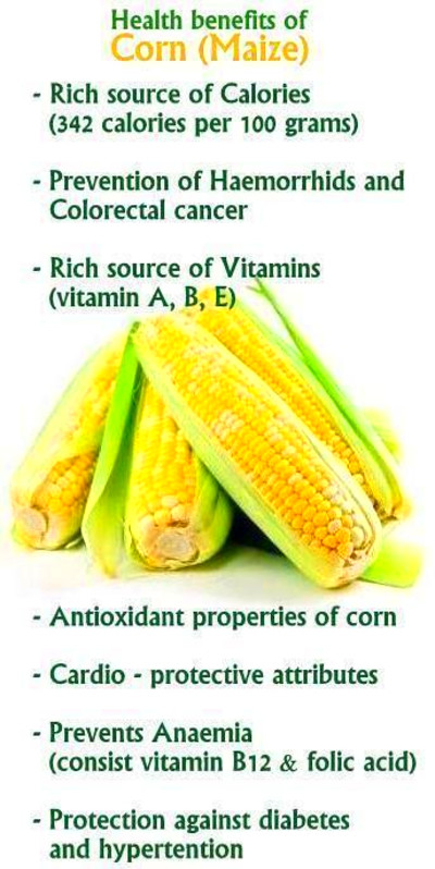 42 best corn images on Pinterest | Health foods, Healthy eating and Healthy eating habits