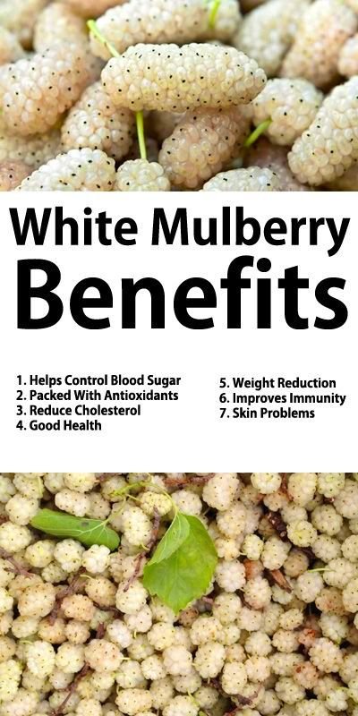 White Mulberry Benefits 1. Helps Control Blood Sugar 2. Packed With Antioxidants 3. Reduce ...