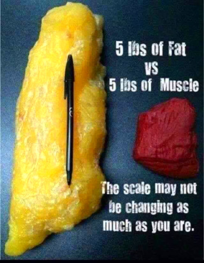 Fat and muscle weigh the same!! 5lbs is 5lbs. BUT.....fat ...
