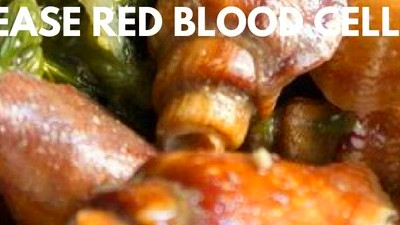 How to Increase Red Blood Cell Count Fast to Increase Red ...