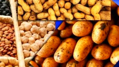Lectins: The New Diet Enemy? - YouTube
