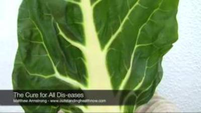 healthoverflowing.com | Health Cure all Diseases Misc ...