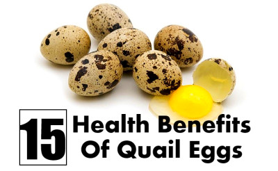 15 Magnificent Health Benefits Of Quail Eggs | Find Home Remedy & Supplements