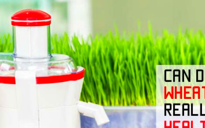 Can Wheatgrass Juice Really Make You Healthy and Happy?