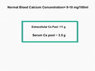 The Causes and Implications of Subclinical Hypocalcemia