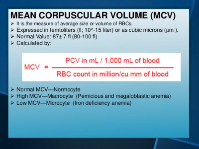 Physiology Presentation: RBC Indices