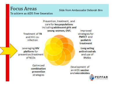 Research to Guide Practice: Enhancing HIV/AIDs Platforms ...
