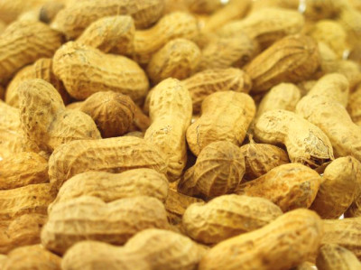 Glycemic Index for Nuts | LIVESTRONG.COM