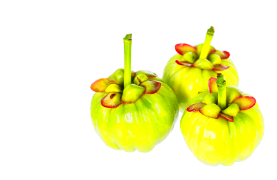 Garcinia Cambogia Review (UPDATE: Feb 2018) | 21 Things ...