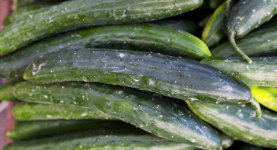 Find Out What Vegetables Are In Season - Thrive Market