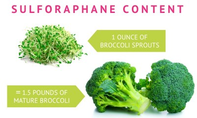 Sulforaphane to Heal Arthritis Joints - How To Get Optimum ...