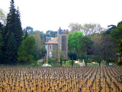 Château Capion Vineyards