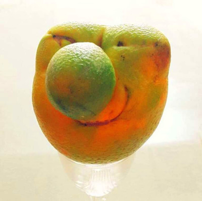 """These """"Ugly"""" Fruits + Veggies Are Actually The Cutest ..."""