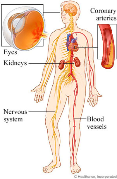 Chart to record blood sugar levels, what part of the body system does diabetes affect, free ...
