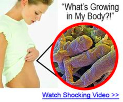What are probiotics? Read this before you BUY Nucific BIO X4 Review ...